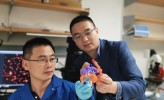 UCLA-Led Team Develops 'Smart' Insulin (IMAGE)